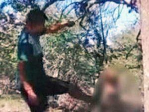 Argentina - Appende il cane all'albero e lo uccide a calci e bastonate
