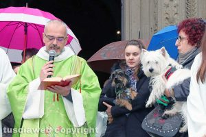 Viterbo - Basilica della Quercia - Benedizione degli animali per sant'Antonio Abate