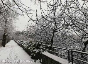 Maltempo - La neve a viale Trieste