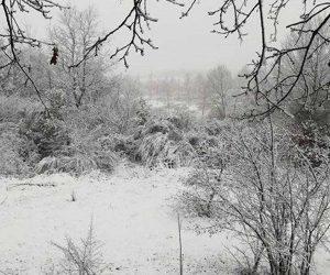 Neve a Torre Alfina