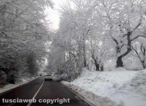 Maltempo - La neve sui Cimini - La strada Cimina - Neve