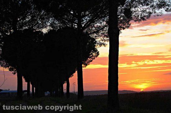 Tramonto a Tuscania
