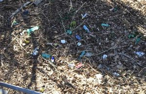 Viterbo Clean up ripulisce un tratto di bosco sulla Cimina
