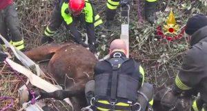 Parma - L'intervento dei vigili del fuoco