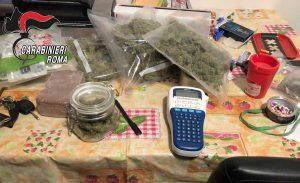 Cerveteri - Gli 11 kg di droga sequestrata