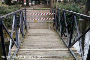Viterbo - Il ponte sul laghetto di pratoglardino Lucio Battisti