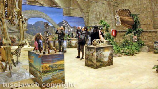 """Viterbo - L'inaugurazione della """"Terra dei giganti"""""""