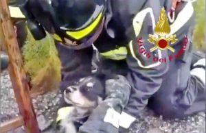 Palermo - L'intervento dei vigili del fuoco