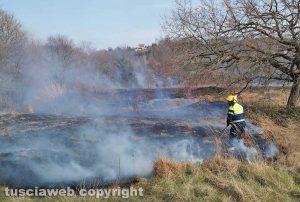 Montefiascone - L'incendio in località Monte Rotondo - L'intervento dell'Asvom
