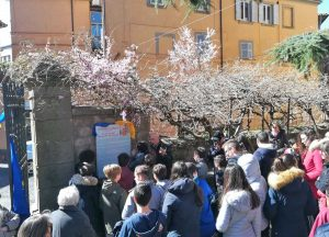 Viterbo - L'inaugurazione del giardino della fraternità