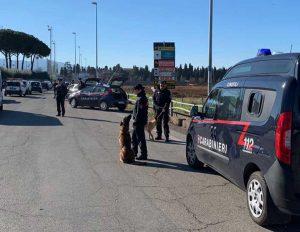 Viterbo - I controlli dei carabinieri con le unità cinofile