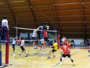 Sport - Volley - Volley Club Orte - Scarabeo Civita Castellana