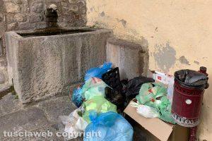 Viterbo - Spazzatura al lavatoio di via dei Giardini