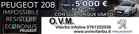 ovm-480x120-208-8-3-19
