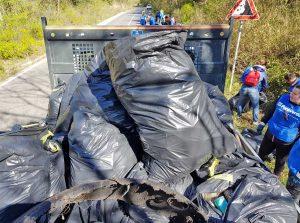 Vasanello - Una parte dei rifiuti raccolti