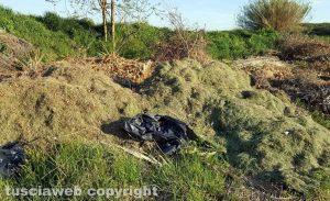 Capodimonte - I cumoli di immondizia ed erba tagliata