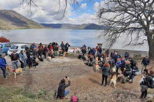 Ronciglione - Il raduno di labrador