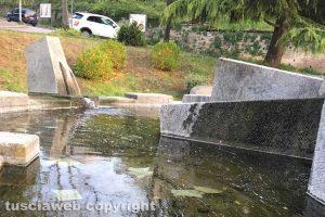 Viterbo - La fontana della Sfera