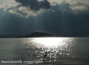 Marta - Il lago color argento