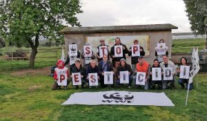 Wwf - Stop pesticidi