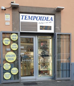 Tempoidea