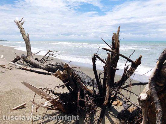 La spiaggia di Tarquinia