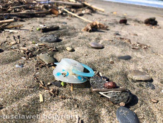 Tarquinia - Un ciuccio sulla spiaggia