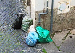 Viterbo - Sacchi pieni di erbacce