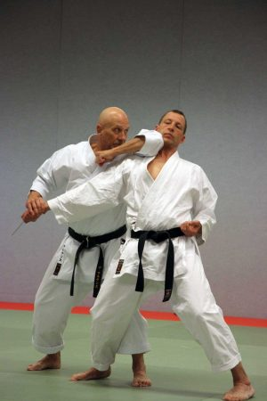 Amsterdam - International Budo Seminar