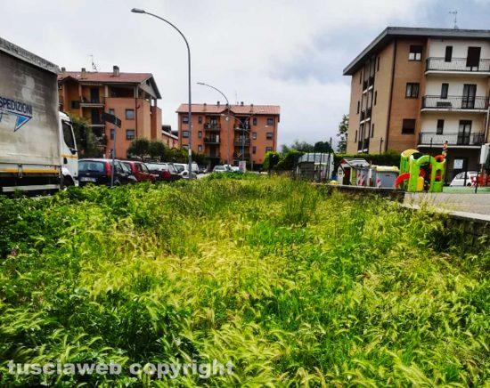Viterbo - L'erba in via Tarconte