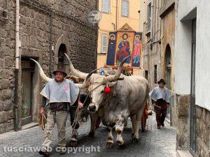 Viterbo - La processione del Santissimo Salvatore sfila per le vie del centro
