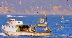Un peschereccio - Foto di repertorio