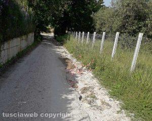 Viterbo - Degrado in strada Salemme