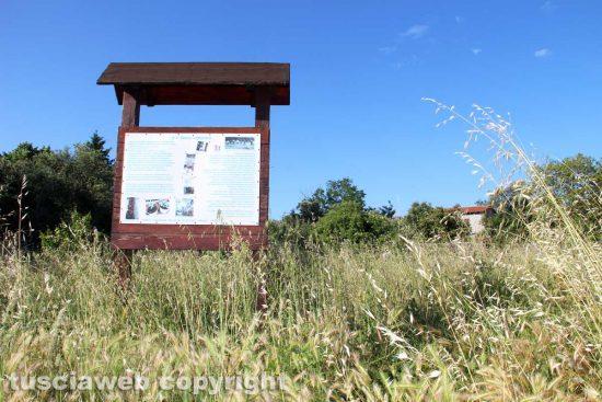 Viterbo - La zona delle case popolari a sud