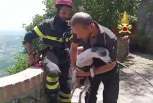 San Marino - I vigili del fuoco salvano un levriero