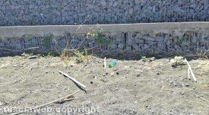 Montefiascone - Il degrado sul lungolago