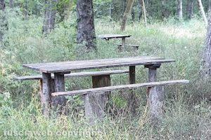 Viterbo - Incuria al parco dei monti Cimini