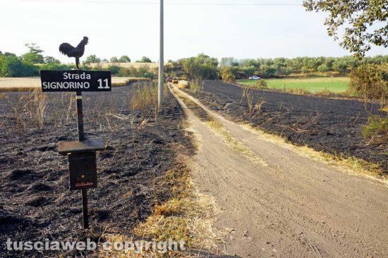 Viterbo - L'incendio in strada Signorino 11
