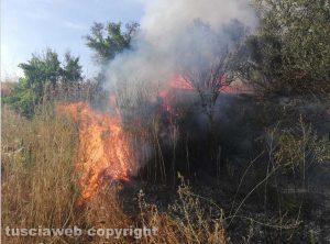 Incendio (foto di repertorio)