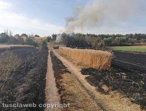 Viterbo - Incendio in strada Signorino