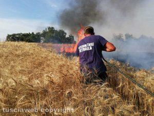 Viterbo - Incendio in strada Signorino - La protezione civile in azione