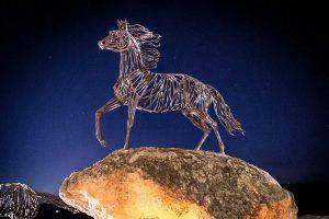 Tarquinia - Tra i rami dell'arte