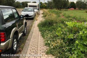 Viterbo - I marciapiedi in via Raffaello coperti di erba