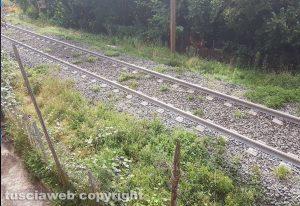 Vignanello - Ferrovia Roma-Civita Castellana-Viterbo
