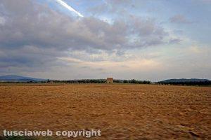 Terreno agricolo in provincia di Viterbo