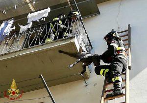Montevarchi - Vigili del fuoco salvano il cane