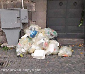Viterbo - Rifiuti a piazza San Carluccio
