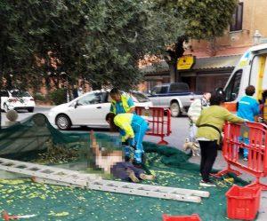L'uomo a terra caduto mentre raccoglieva le olive
