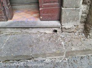 Montefiascone - Il guano dei piccioni all'ingresso della chiesa della Madonna dell'Arco