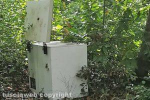 Capranica - Un congelatore abbandonato nei boschi